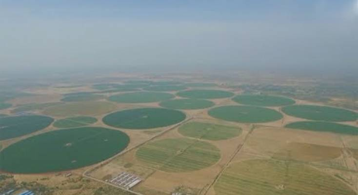 صورة فيديو | الصين تكافح التصحر بـ«الدوائر الخضراء العملاقة»