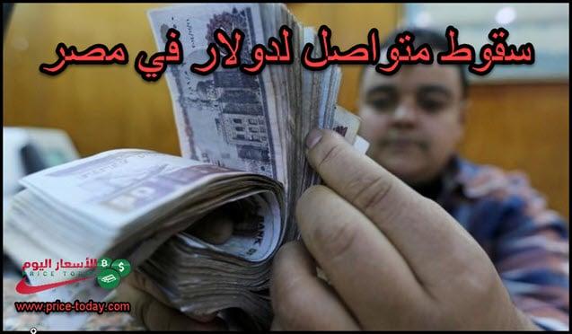 الدولار يواصل السقوط في مصر امام الجنيه المصري