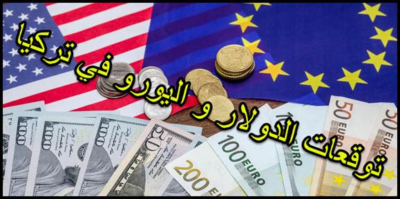 توقعات الليرة التركية مقابل الدولار واليورو الى 15 مارس 2019