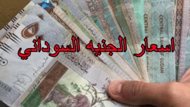 كم يساوي الدولار بالجنيه السوداني