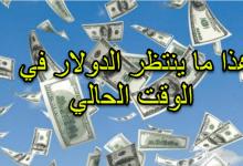 صورة هذا ما ينتظر الدولار في المرحلة المقبلة